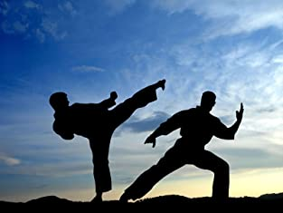 Unlimited Martial Arts Training