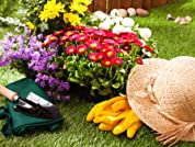 $30 to Spend on Bulk Landscaping Products