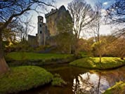 Six-Night Ireland Adare Villa Vacation from Seattle with Airfare and Rental Car (Based on Quad Occupancy)