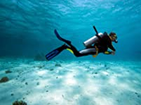 Scuba Course, Snorkeling Class, and More