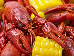 Admission to the Kemah Crawfish Festival