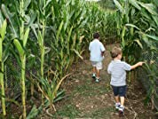 Corn Maze and Fall Activities at Keller's Farm