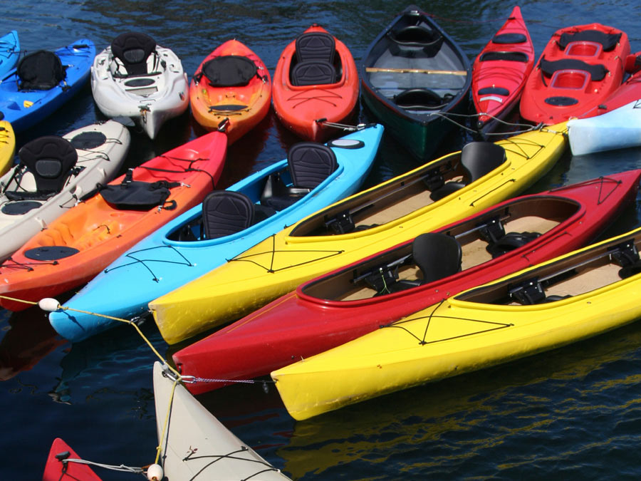 SUP or Kayak Rental