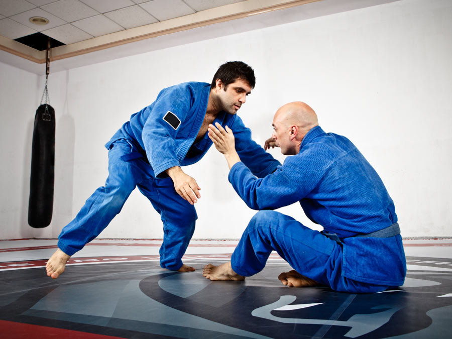 20 Jujitsu Classes