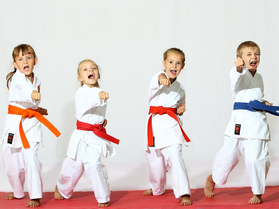 Kid's Martial Arts Classes or Birthday Party