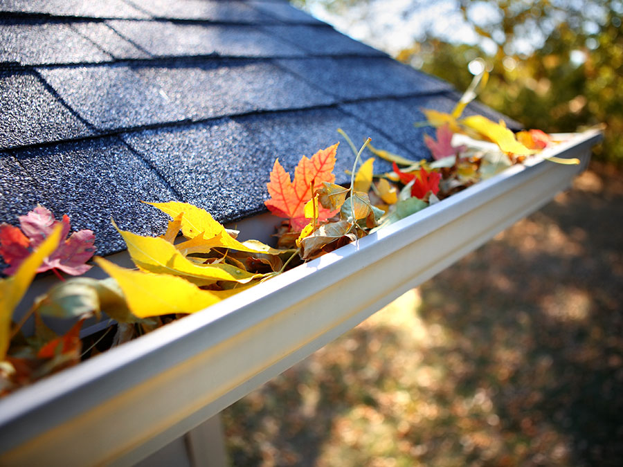Gutter Cleaning for a One or Two-Story Home