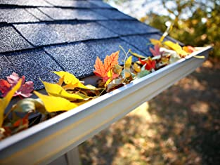 Gutter Cleaning and Video Roof Inspection