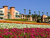 Carlsbad Resort Stay with Waived Resort Fee