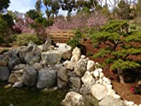 Japanese Friendship Garden Membership