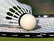 Badminton, Pickleball, or Table Tennis Outing