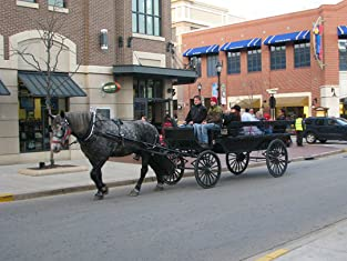 Horse-Drawn Wagon Ride for up to 12 People