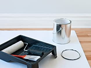 Interior Painting or Handyman Services