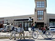 Horse-Drawn Carriage Ride with Milkshakes