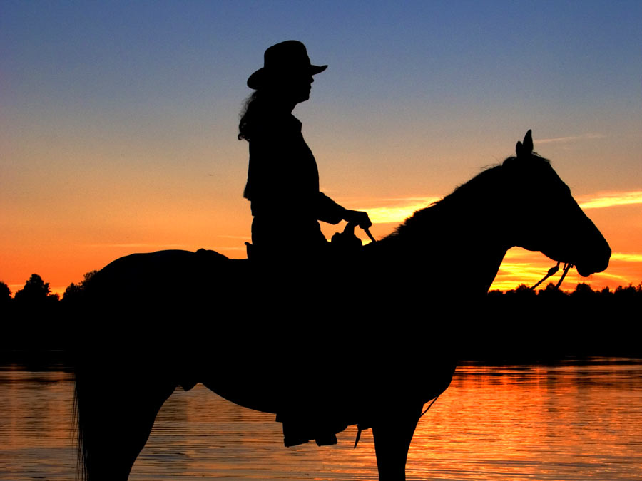 Horseback Riding Lesson or Sunset Ride