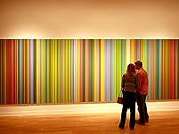 Laguna Art Museum Admission