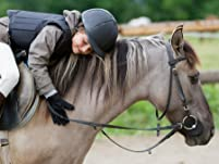 90-Minute Horseback Riding Lesson of Your Choice