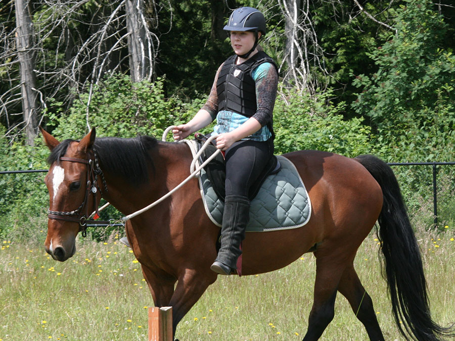 One-Hour Private Horseback Riding Lesson