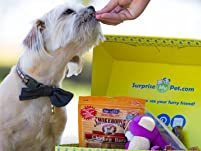 One-Month Pet Package Subscription