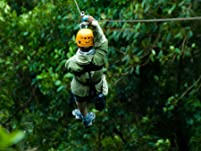 Treetop Adventure for Two, Including Zip-Lining