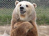 Bear Path Acres Animal Education Center Admission