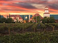 Overnight Temecula Wine Resort Getaway with Lunch, Wine Tasting, Flight of Wine, and More