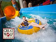 Great Wolf Lodge, Traverse City Stay with Waterpark Wristbands and Resort Credit