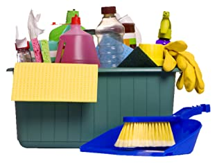 $40 to Spend on Cleaning Supplies and Rentals