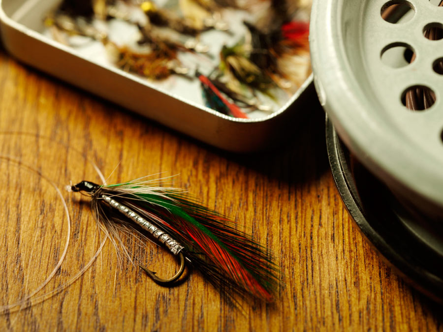Fly-Casting Lesson for One or Two