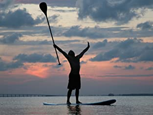 Paddleboard or Kayak Rental at Marina Paddle