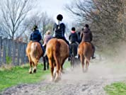 90-Minute Horseback Ride for Two or Four