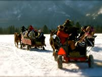 Sleigh Ride for Two, Four, or Eight with Hot Drink