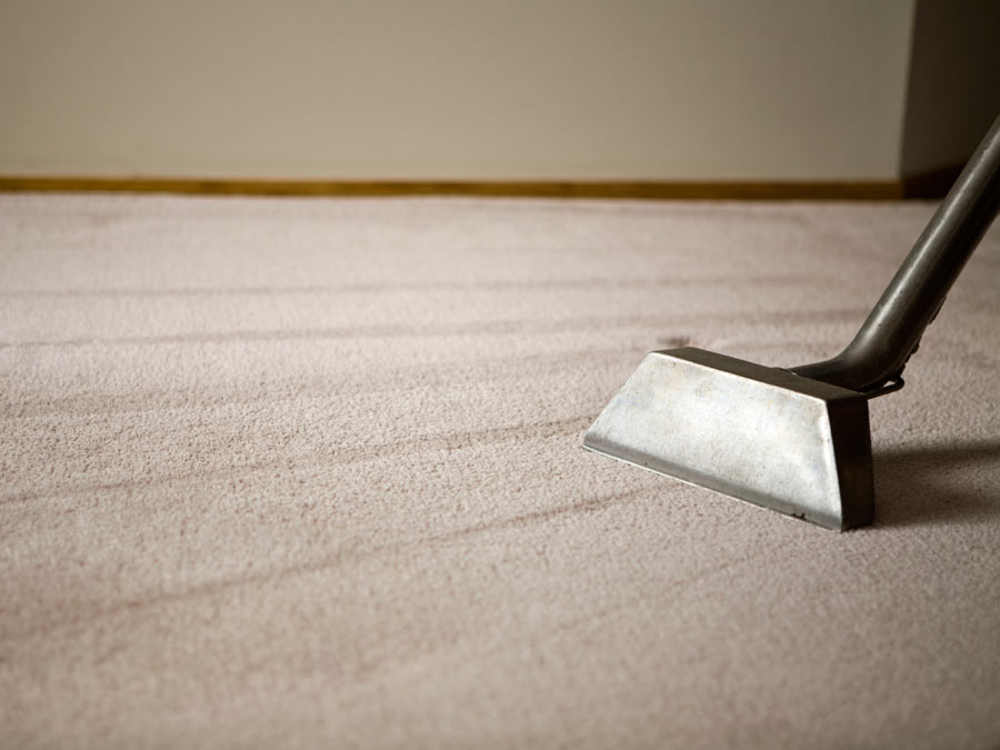 Certified Carpet Cleaning for the Entire Home