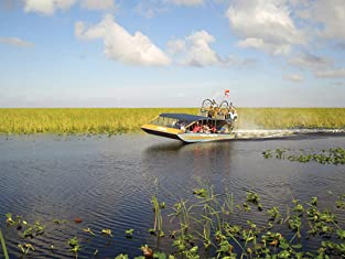Tour or Boat Rental at Everglades Holiday Park