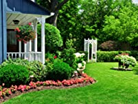 3D Landscaping Design Package