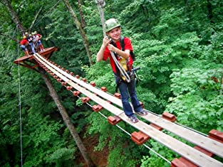 eXplorer Canopy Tour for Four