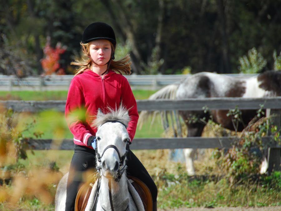 Horsemanship or Riding Lessons