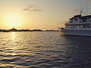 Sunset Cruise for One and Drinks