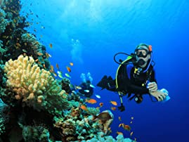 Five Three-Hour Scuba Diving Certification Lessons