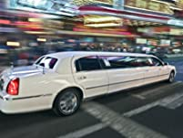 Limo Holiday Light Tour Package for up to 10 People