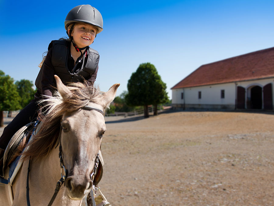 Private Horseback Riding Lessons: One or Three