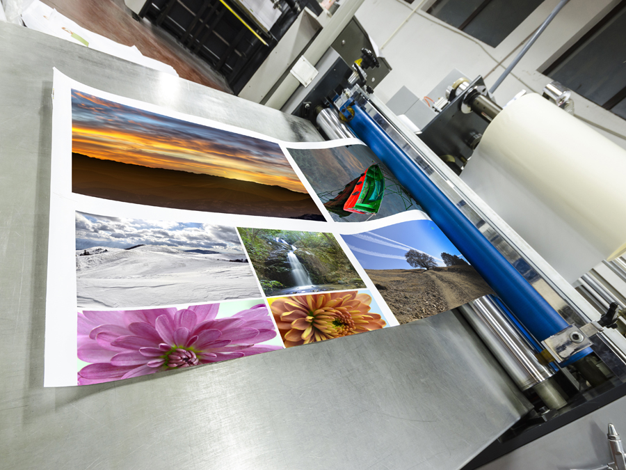 $100 to Spend on Printing Services