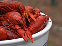 Fresh Crawfish and Beer or Sangria at London Lennie's Crawfest
