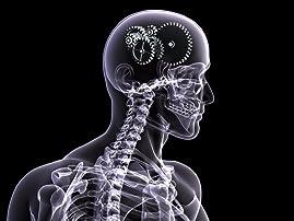 Brain-Balancing Assessment, Exam, and More