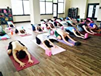 Five 60-Minute Yoga Classes of Your Choice