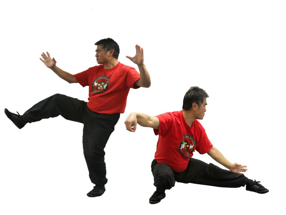 Five Tai Chi Classes