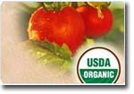 B000HDJXLW_1-863_organic_usda_organic.ashx.jpg
