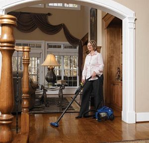 Dirt Devil Breeze Canister Vacuum Cleaner