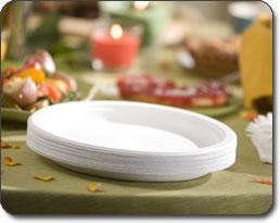 Chinet Dinner Plates