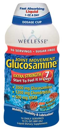 Wellesse Joint Movement Glucosamine with Chondroitin + MSM Liquid, Natural Berry Flavor, Sugar Free
