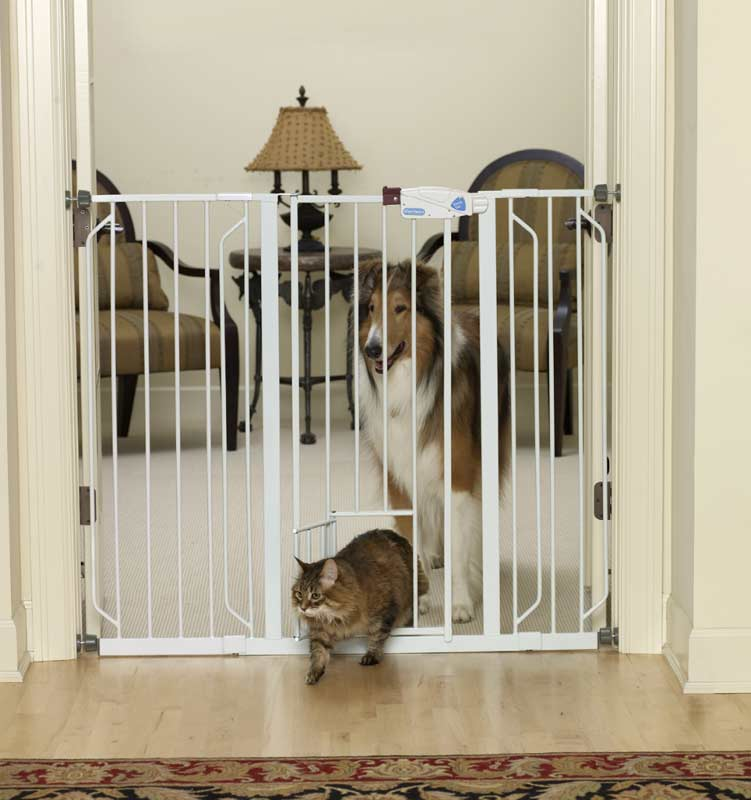 Amazon.com: Carlson 0941PW Extra-Tall Walk-Thru Gate with Pet Door